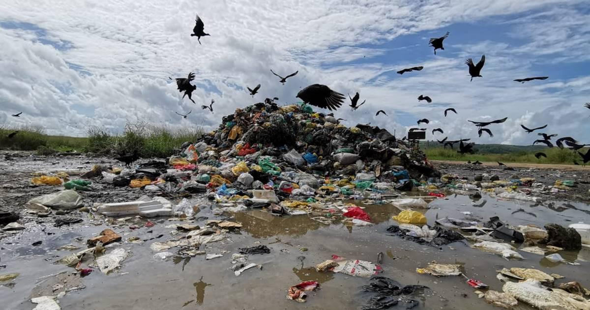 Área de transbordo dá lugar a novo lixão em União dos Palmares