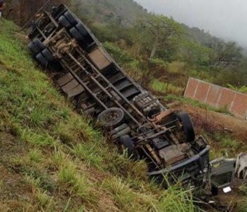 Caminhão carregado de bois que saiu de União tomba na BR-104, em PE — © Reprodução