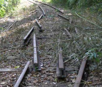 Trilhos de trem - imagem ilustrativa