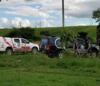 Diversas guarnições participam de operação em União dos Palmares — © PMAL