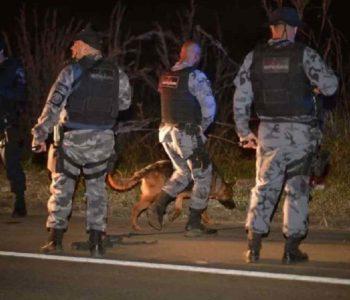 Policiais fazem buscas por Lázaro com cães farejadores — © Ed Alves/CB/D.A Press
