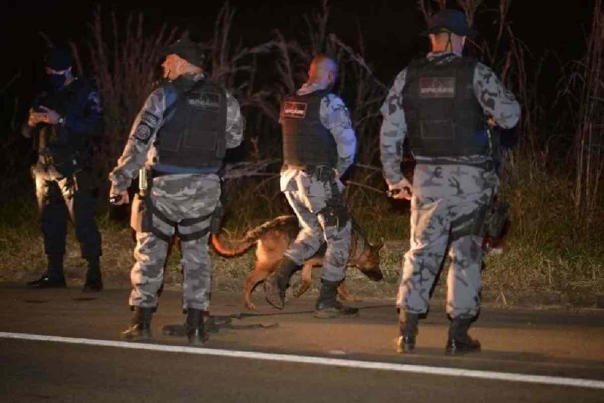 Urgente: Cães encontram rastros de Lázaro Barbosa na mata