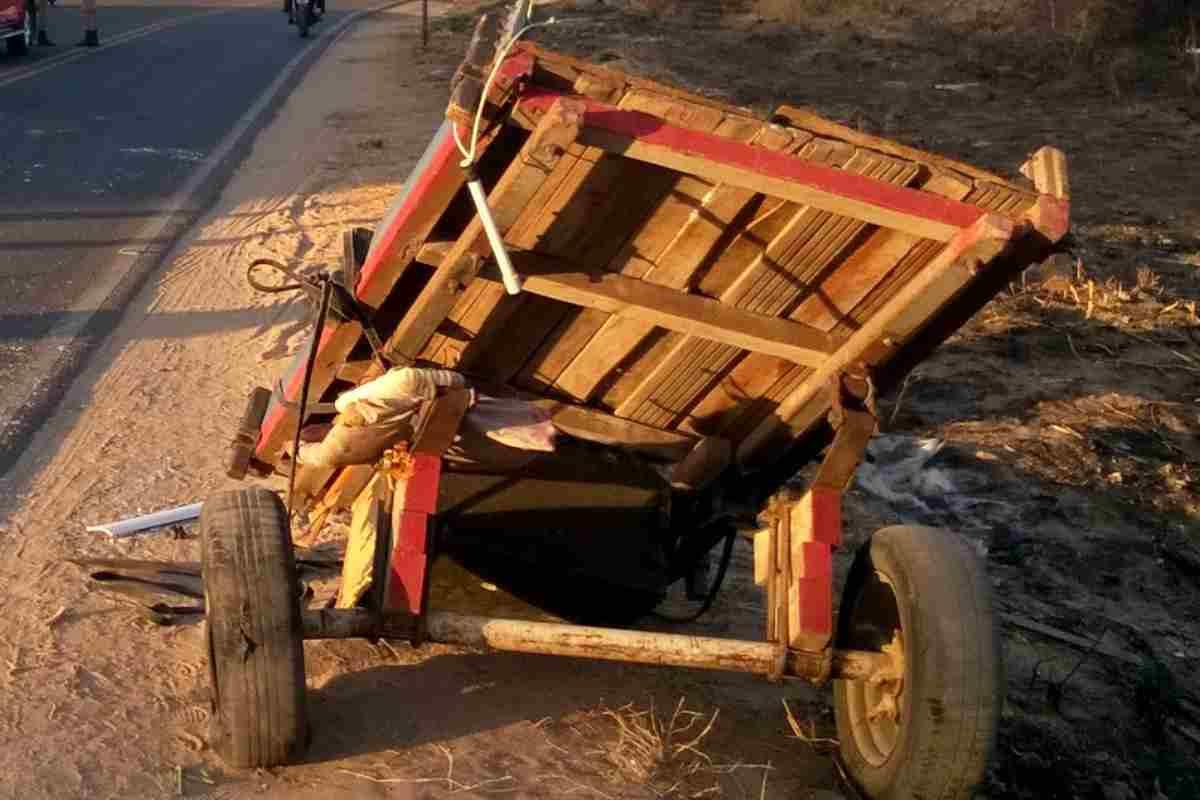 Carroça danificada após acidente | © Ilustração
