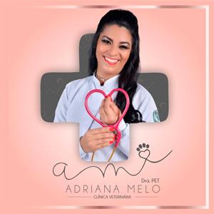 Banner publicidade Adriana Melo