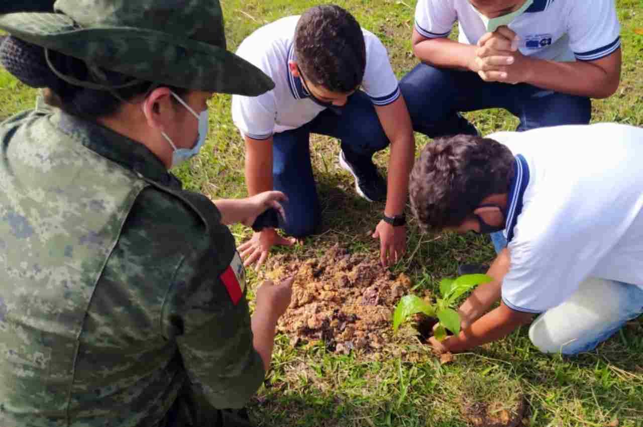 Alunos realizaram o plantio de mudas de espécies nativas da flora local | © PMAL