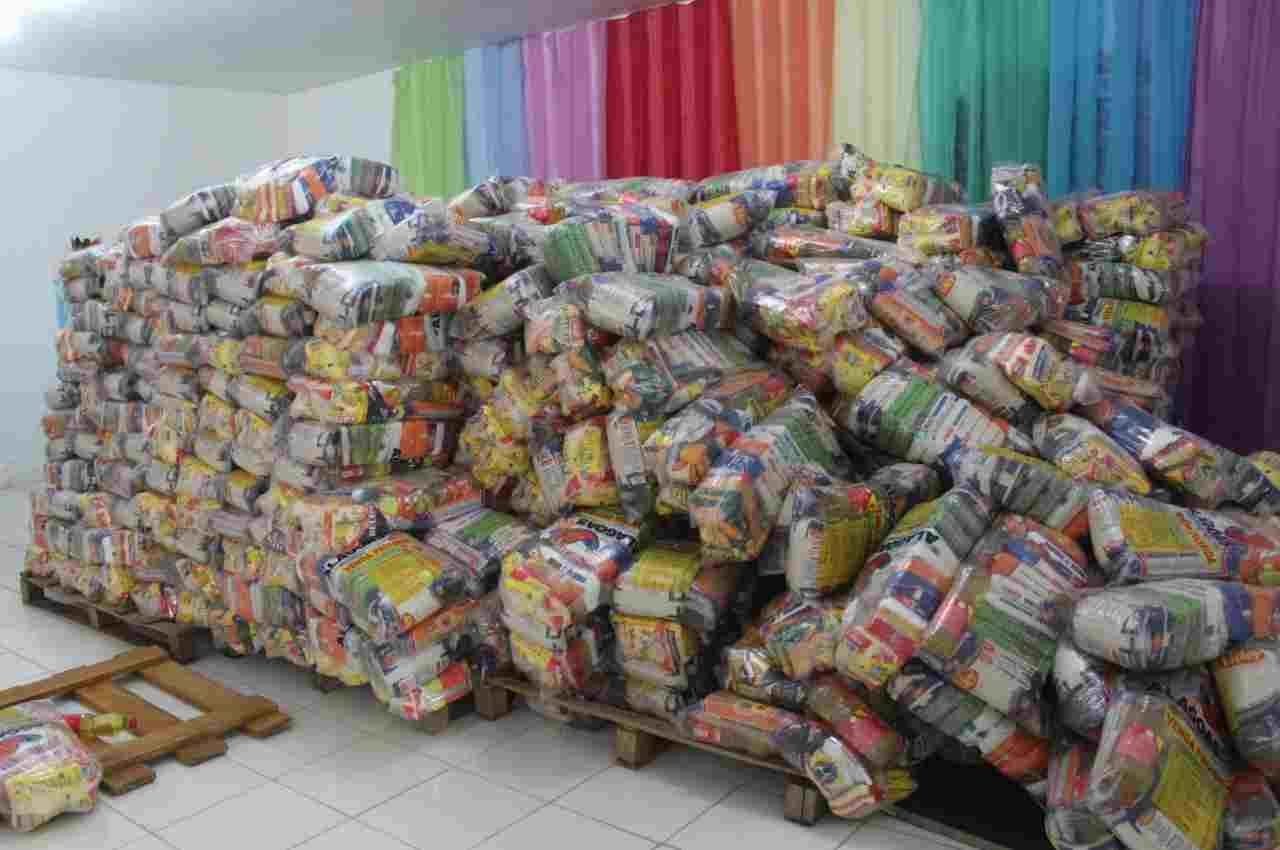 O município recebeu 1.600 cestas do Governo de Alagoas, que já foram entregues ao longo das últimas semanas © Divulgação
