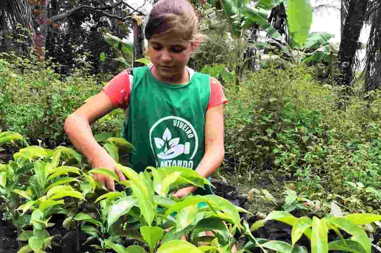 """São 26 crianças e jovens participantes do """"Viveiro Plantando Sombras""""   © Assessoria"""